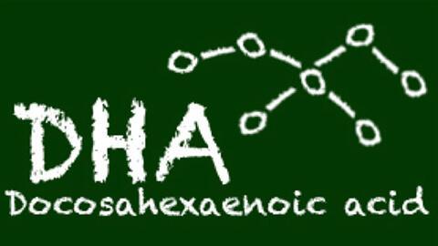 DHA 101